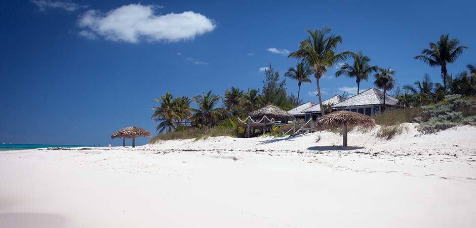 Tippy's Beachfront Bistro Bar on Eleuthera