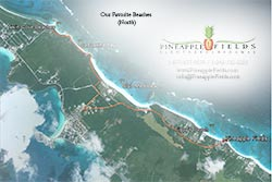 Satellite map shows our favorite beaches north of Pineapple Fields Resort