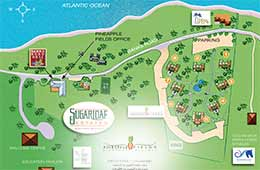 Map of Pineapple Fields Resort and Condo Hotel on Eleuthera Island in the Bahamas.